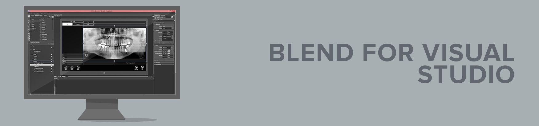 Blend for Visual Studio Image Viewer SDK