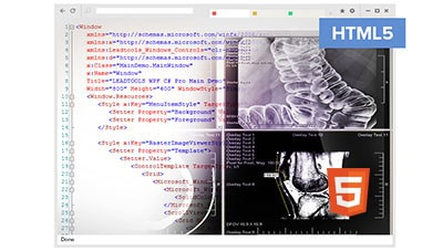 HTML5 Medical Viewer